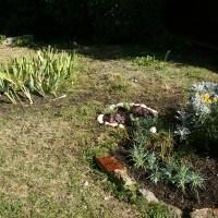 Créativité au jardin : Préparer des massifs pour l'automne et le printemps (1)
