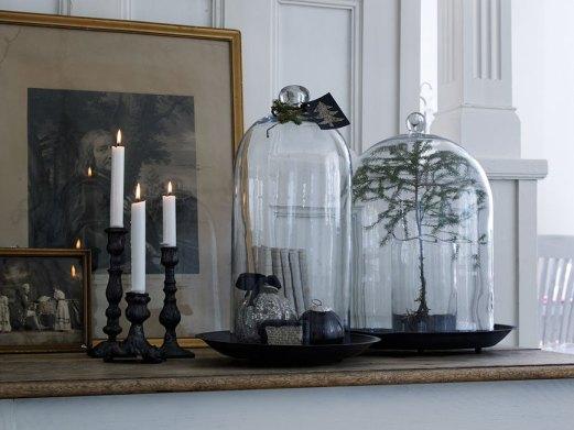 Des cloches en verre pour tous les espaces et toutes les occasions.