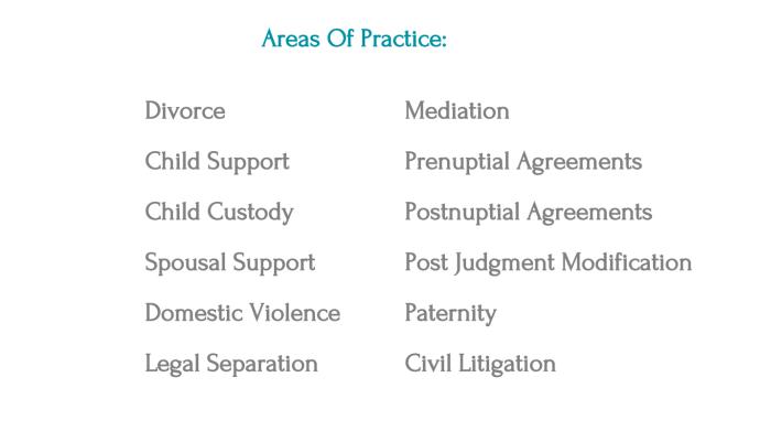 Kazimi-Areas-of-Practice