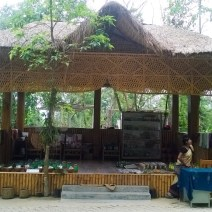 Kaziranga Orchid Park, Kaziranga Jungle Safari, Kaziranga Hotels and Resorts