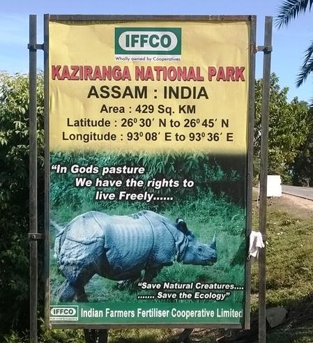 Kaziranga National Park Rhino, Kaziranga Assam, Kaziranga Safari, Assam Tourism