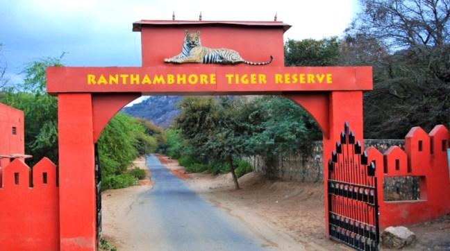 Ranthambore National Park, Ranthambore Tiger Reserve, Ranthambore, Kaziranga National Park