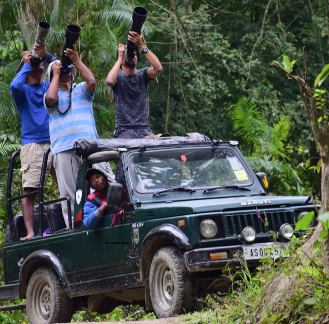 Kaziranga Photography, Photography Tour North East India, Birding Photography Assam