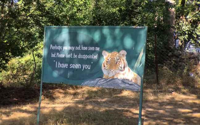 Bandhavgarh National Park, Bandhavgarh Tiger Reserve, Bandhavgarh Safari, Bandhavgarh Hotels
