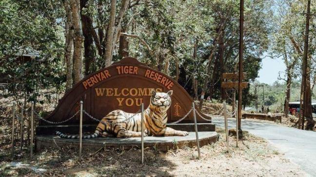 Periyar National Park, Periyar Tiger Reserve, Periyar Safari, Periyar Hotels, Kerala Tourism