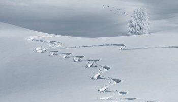 アナ 雪 2 解釈
