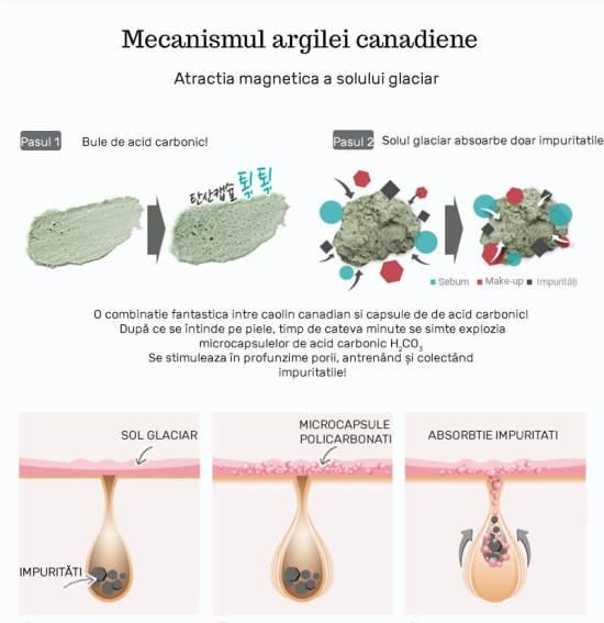 Neogen-Canadian-Clay-Pore-Cleanser-desc copy