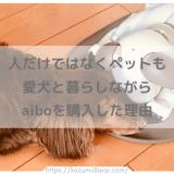 aiboはきっと人の心もペットの心も救う 愛犬ダックスと暮らす我が家がaiboを購入した理由