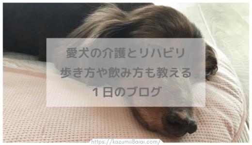愛犬の介護とリハビリ 歩き方や飲み方も教える1日のブログ