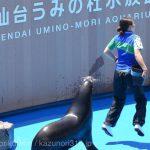 7/1 仙台うみの杜水族館 1st ANNIVERSARY #s_uminomori https://t.co/jEDI193UtX