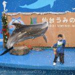 仙台うみの杜水族館、バンドウイルカのイルカショー #s_uminomori https://t.co/hL4TayS176