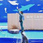 #バンドウイルカ #エアリフト #仙台うみの杜水族館 #nikonD5300