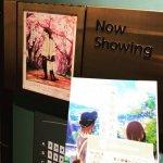 #劇場アニメ #君の膵臓をたべたい レイトショー程よく客入りいいんじゃない?