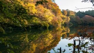 今年は金沢市倉ヶ岳の倉ヶ岳大池の紅葉&リフレクションが凄いです☆