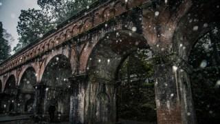 渋い風景を求めて冬の京都に日帰り撮影旅行行ってきました☆