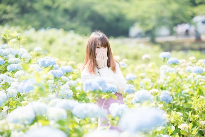 柳田植物公園の紫陽花