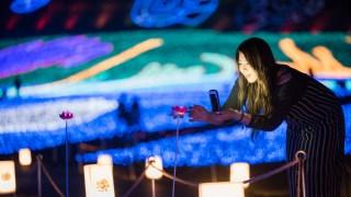 スキージャム勝山(福井県勝山市)の北陸最大級のイルミネーションイベントが美しい件