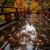 小松・那谷寺はやはり雨の日の紅葉リフレクションでしょう☆
