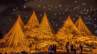 2019年の金沢城・兼六園ライトアップ冬の段が始まりました【2月19日まで】