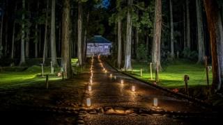 平泉寺白山神社の期間限定ライトアップが荘厳な雰囲気でした