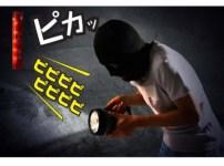 シャインマスカット 盗難 対策