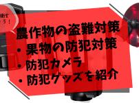 【農作物の盗難防止対策】果樹園の防犯対策・防犯カメラ・防犯グッズを紹介 447