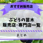ぶどう農家おすすめのブドウの苗木販売店・専門店一覧【まとめ】 32