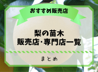 梨農家おすすめの梨の苗木販売店・専門店一覧【まとめ】 161