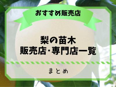 梨農家おすすめの梨の苗木販売店・専門店一覧【まとめ】 32