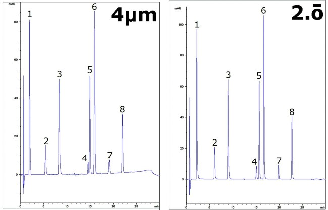 Separation of Hydrophobic Compounds Chromatograms