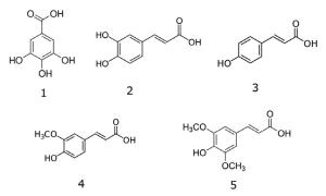 Rice Extract Chemical Structures