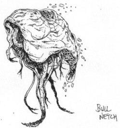 bullnetch