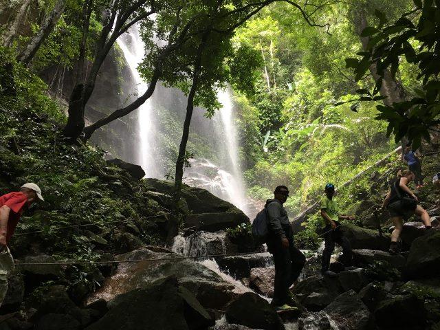 Kembara #KBBA Ke Royal Belum Rainforest Tempat Pencinta Hutan Semulajadi