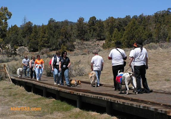 The Alpine Pedal Path was packed with those in support of Walk MS on the 18th, a sunny spring morning.