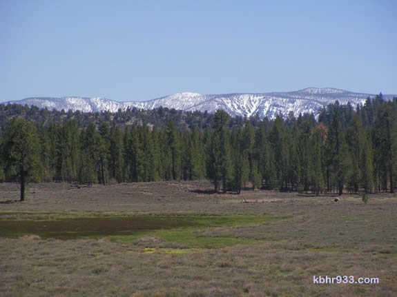 Holcomb Valley, pictured here in May, was once the site of the richest gold strike in Southern California history.