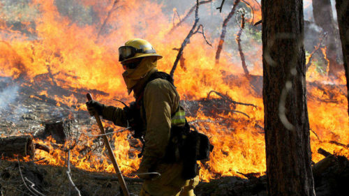 SBD National Forest Increases Fire Restrictions