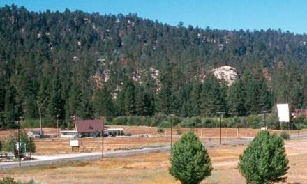 Land Trust Saves Big Bear's Best Meadowland