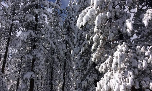 Big Bear Lake is Rising and Setting Records