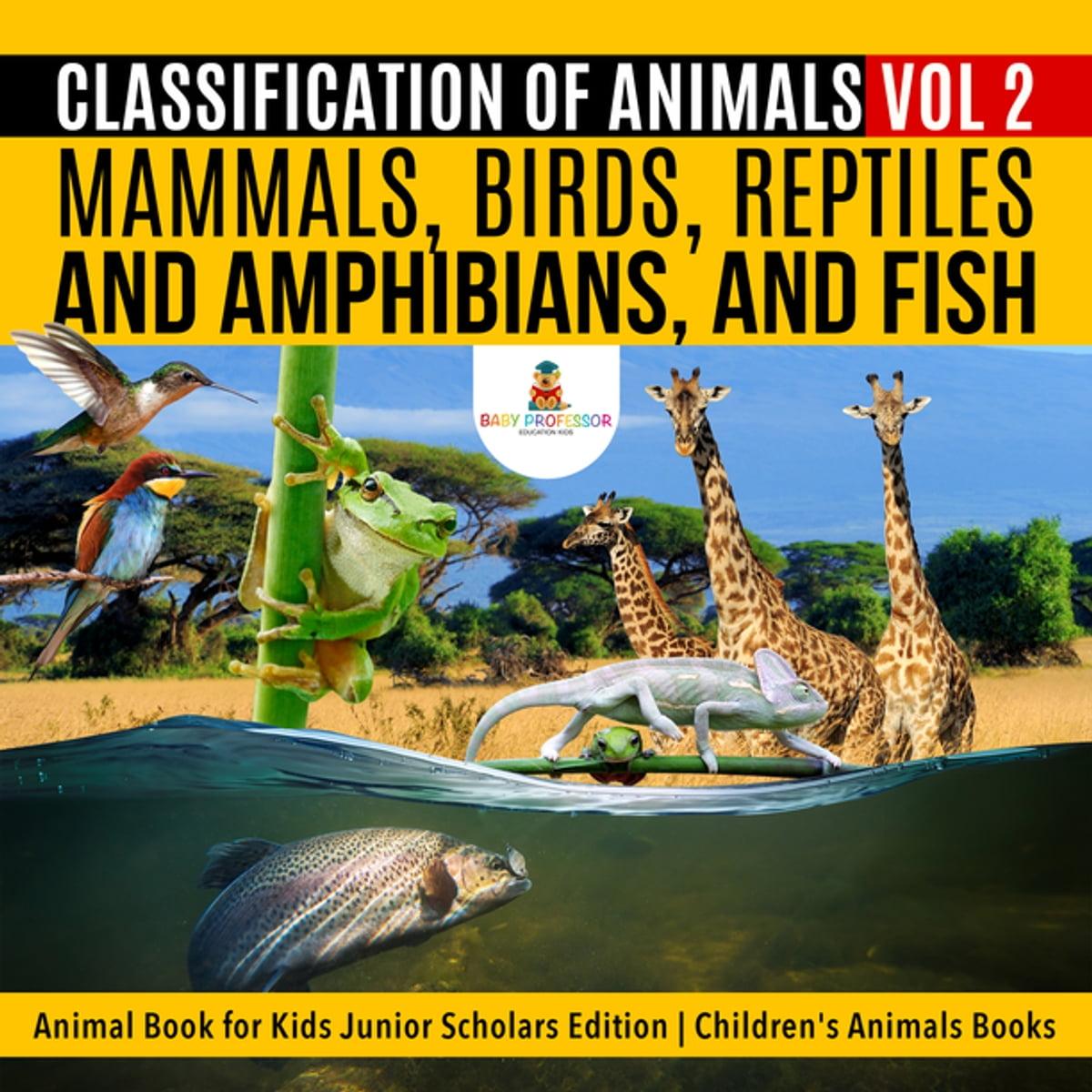 Classification Of Animals Vol 2 Mammals Birds Reptiles