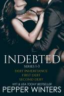Indebted Series 1-3 eBook by Pepper Winters - 1230001030518 ...