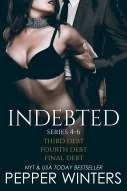 Indebted Series 4-7 eBook por Pepper Winters - 1230001032123 ...