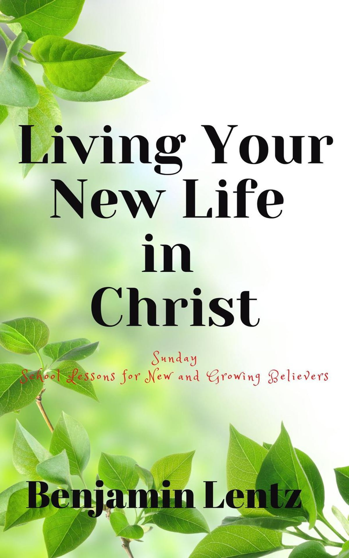 Living Your New Life In Christ Sunday School Lessons For