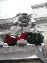 The Library Lions remain dressed for the Holidays.