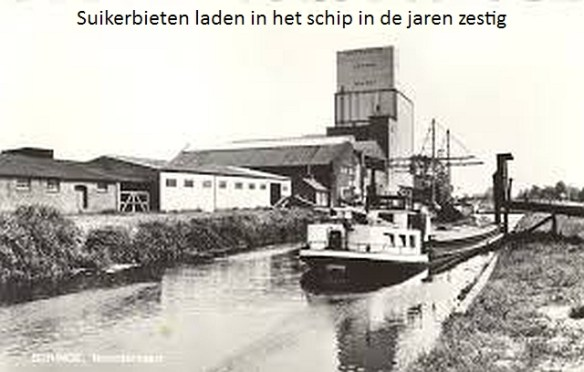 haven-beringe-suikerbieten-laden