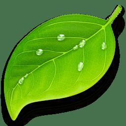 Coda 2.5 web design app