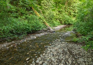 coal_creek