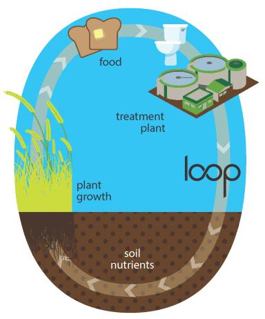 Loop_biosolids
