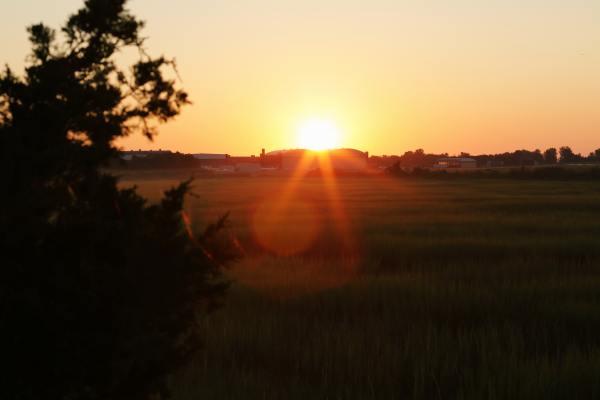 image of a sunrise over horizon