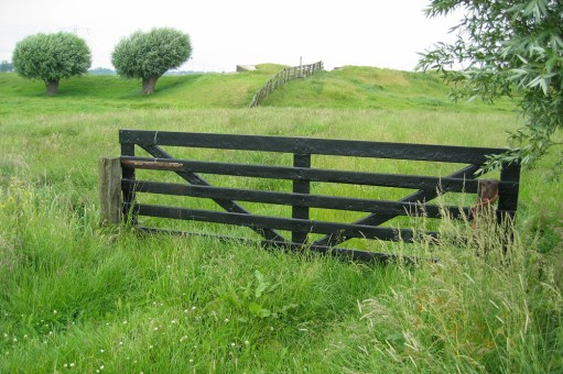A field gate in situ