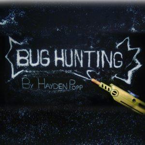 Bug Hunting 2
